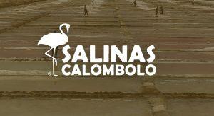 100 Vagas de Emprego para Salineiros e Estivadores em Benguela