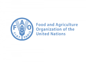 Recruta-se Consultor Internacional em Agricultura Familiar