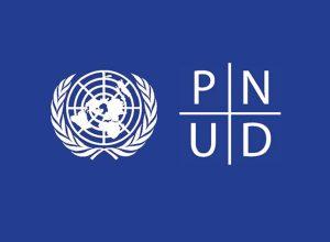 Estagiário Profissional - Assistente de Unidade de Economia (UNDP)